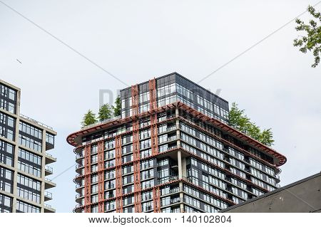 Trees on Roof of Luxury Condo in Vancouver