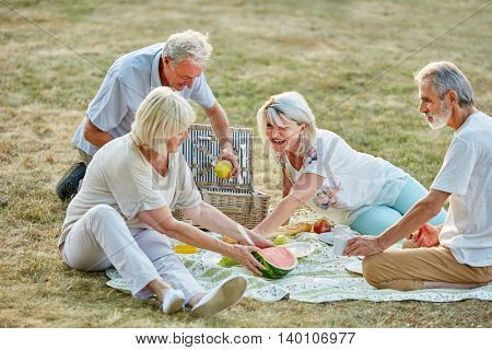 Happy group of seniors in the park in a picnic in summer