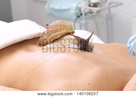 Young beautiful woman getting snail skin cleaning at beauty salon. Snail on back.
