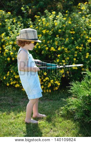 little boy cuts off branches of the shrub shears