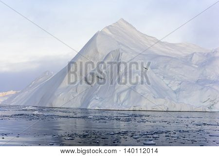 huge glaciers are on the arctic ocean to ilulissat icefjord in Greenland