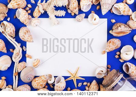 Colorful marine items - seashells starfish coral bottle with note and rope arranged as frame. Top view with blank for text