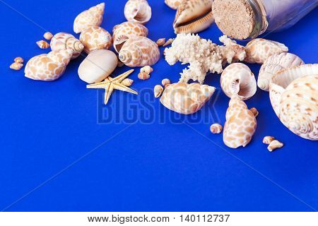 Colorful marine items - seashells starfish coral and bottle with note on a blue background. Space for text