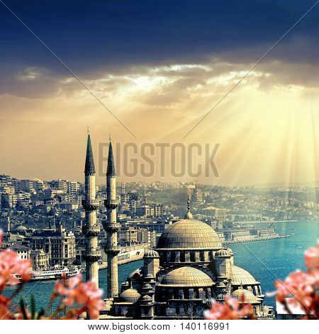 an image of mosque in Istanbul,Turkey