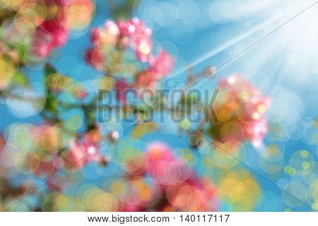 an image of azalea