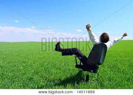 Happy businessman sitting on chair in green field