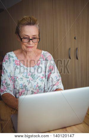 Portrait of senior woman using a laptop
