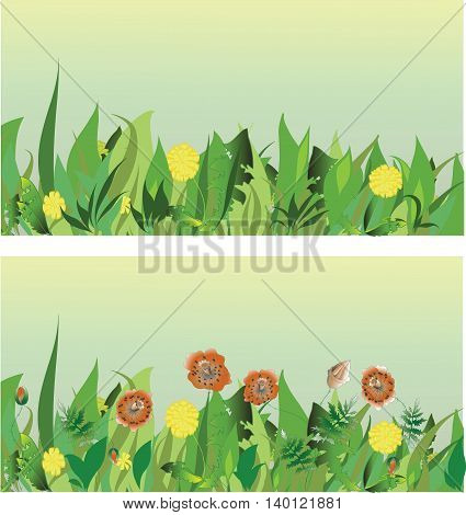 Meadow. Vector image. Background of herbs. Horizontal row of grass in cartoon style.
