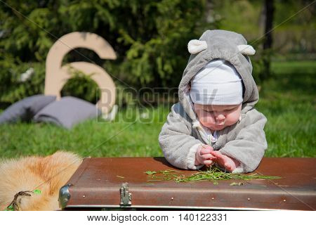a child in the park lies on the bag and playing with grass