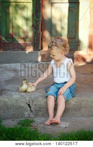 little boy with little yellow duckling in summer village