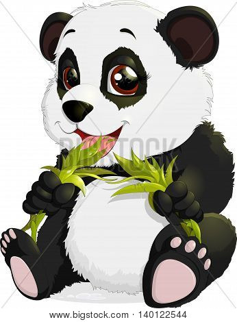 Bear eats bamboo leaves on a white background