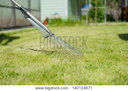 On the green lawn rake collect grass clipping