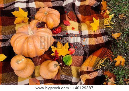 Romantic autumn still life with blanket, pumpkins and leaves, top view