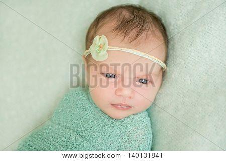 beautiful newborn girl in green close-up