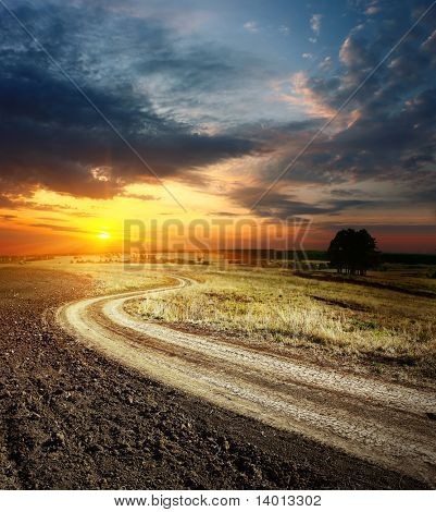 Road in field under sunset light