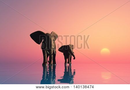 Group of elephants at sunset.,3d render