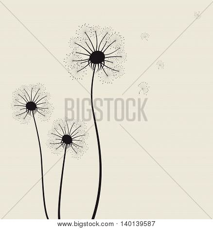 Decoration with dandelion flowers for you design