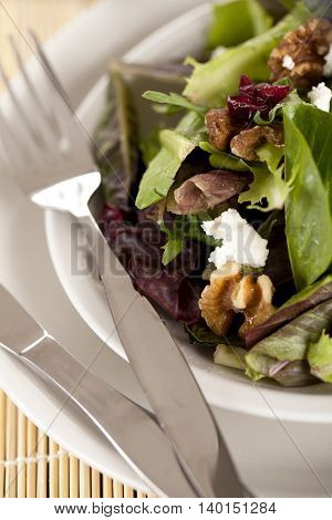 cropped image of a plate with salad