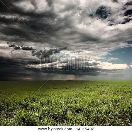 Nuvens de tempestade com chuva sobre o Prado com grama verde