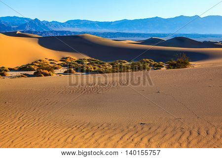 Orange sand dunes in Death Valley, California. Early autumn morning