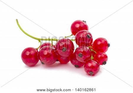 red currant fruit, on a white background