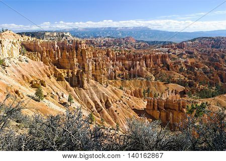 Bryce Canyon NP  There is no place like Bryce Canyon. Hoodoos (odd-shaped pillars of rock left standing from the forces of Hoodoos and forest mixed together.erosion) can be found on every continent, but here is the largest collection of hoodoos in the wor