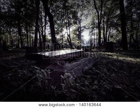 Open grave in the old cemetery. Halloween concept