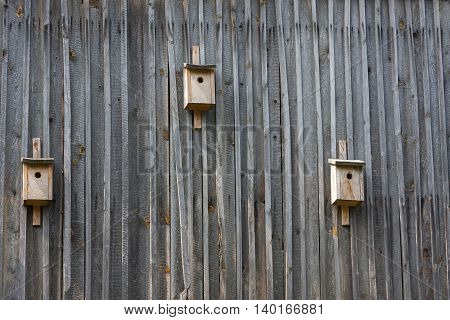 Three wooden houses for birds on a wooden wall