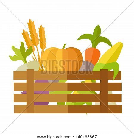 Fresh vegetables at the market vector. Flat design. Delivery farm products, grocery store assortment, foods for diet concept. Illustration of wooden box full of ripe pumpkin, carrot, corn, wheat, beet