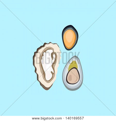 Oysters patterns in color. Seafood concept icons in flat style design. Vector illustration fresh sea oyster. Healthy eating marine products.