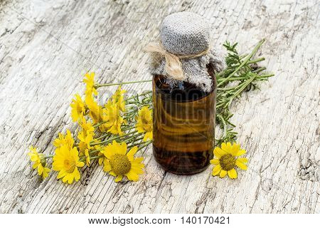 Cota tinctoria synonym Anthemis tinctoria (golden marguerite yellow chamomile oxeye chamomile) and pharmaceutical bottle on old table. Used in herbal medicine and for the production of yellow dyes