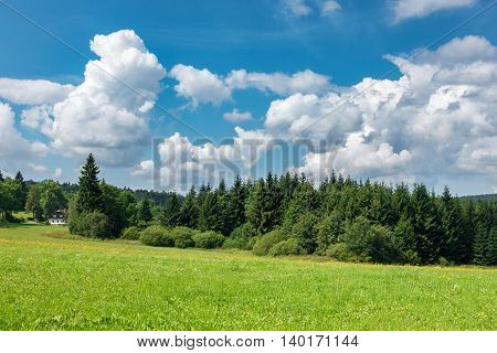 Summer Landscape With Forest, Cottage And Blue Sky