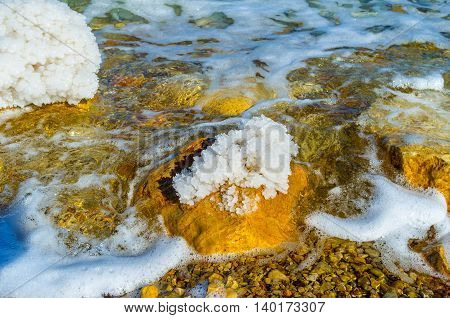 The group of salt crystals on the stone in Dead Sea Ein Gedi Israel.