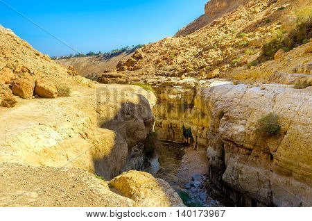 The mountain river in a narrow crevice in Ein Gedi Nature Reserve Israel.