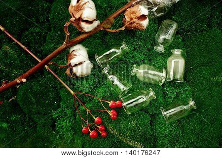 Lot of small glass vials lying on the lush moss and next to a branch of red berries of Hypericum and a branch of cotton