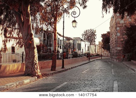 Street in old Damascus with trees