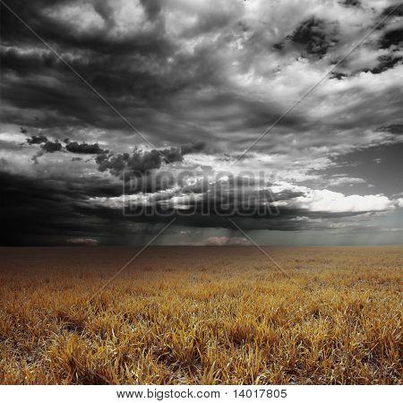 Nubes de tormenta con lluvia sobre Prado con hierba amarilla
