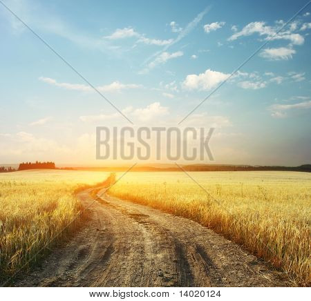 Road in field and blue sky with clouds