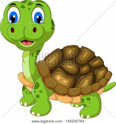 cut cartoon turtle posing look at camera