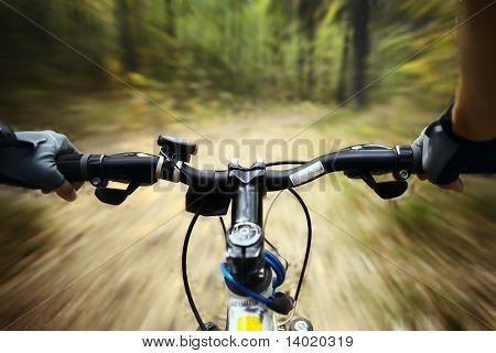 Riding on a bike in forest's path