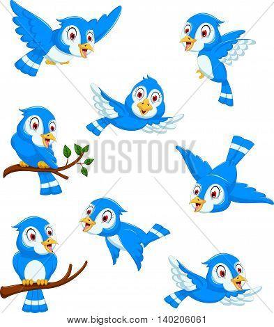 set of cute blue bird cartoon posing