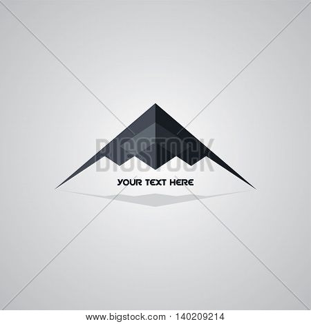 Stealth Logo Aircraft Airplane Logotype