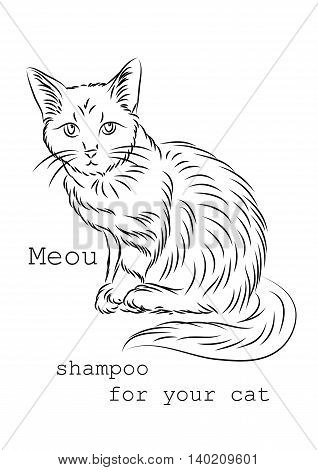Image to use on packages boxes or bottles of shampoo for cats. It can be used as a banner or logo as well as in advertising or sales for your convenience