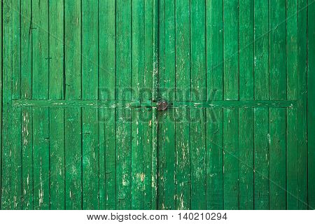 Old wooden door painted in peeling green paint color . background