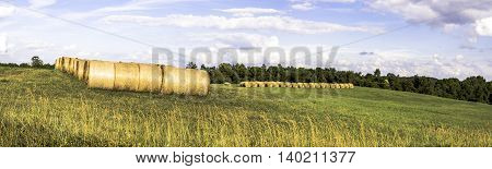 Panoramic view of round hay bales in a hay field