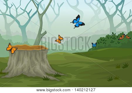 funny butterfly with deep forest landscape background