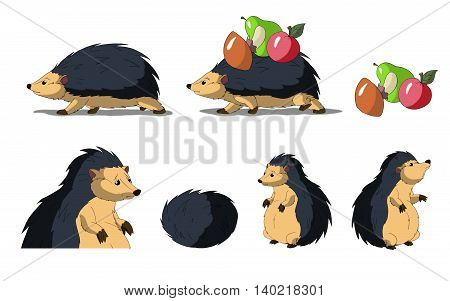 Set of Hedgehogs images. Digital painting full color cartoon style illustration isolated on white background.