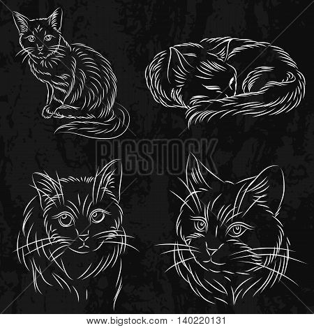 Set of cats in a sketch style. It can be used for books or logo on animal feed toilet shampoo or other accessories. It is easy to change the color on any that you like.