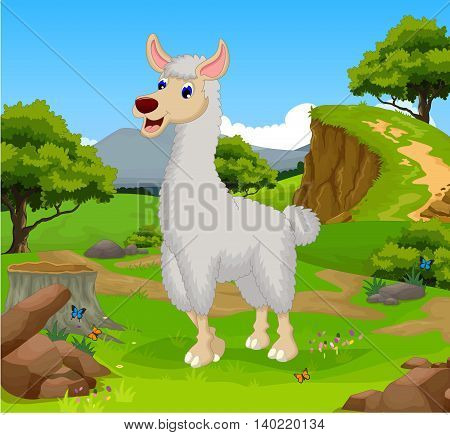 funny lama cartoon in the jungle with landscape background