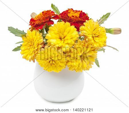 Dark red marigolds flowers and small summer yellow chrysanthemums in a ceramic vase flowerpot. Isolated on white background close-up.